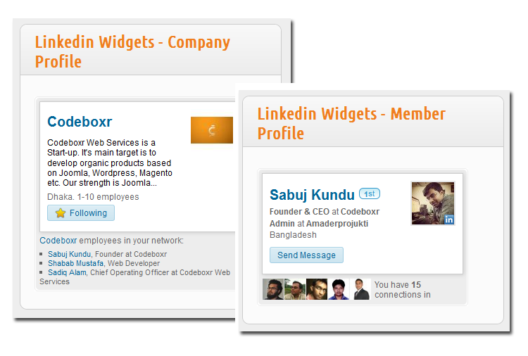 All in One Linkedin Widget